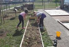 vrtnarjenje-5_1