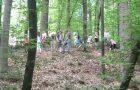 Bili smo v gozdu