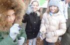 Orientacija na gozdni učni poti